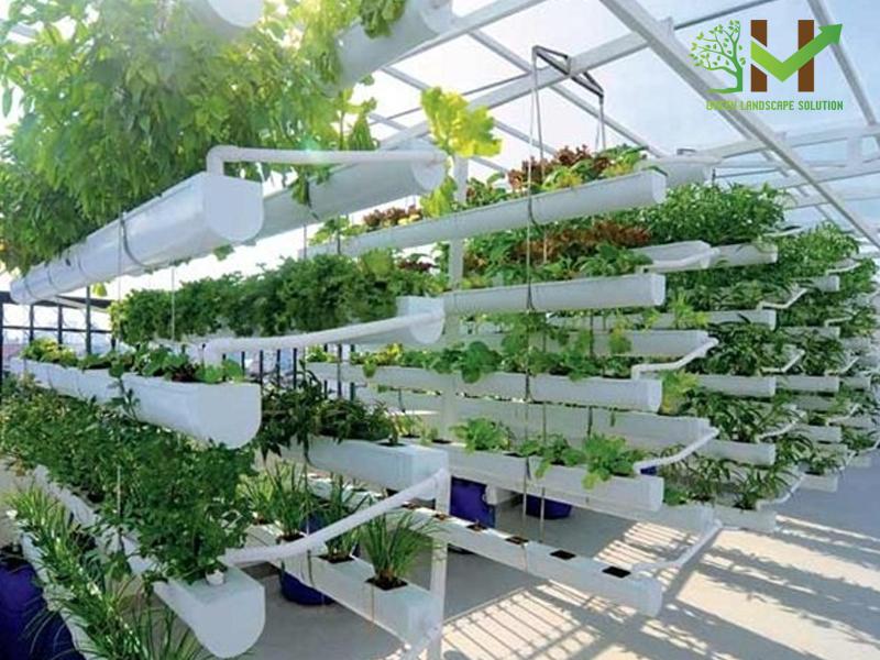 Thiết kế thi công sân vườn trên mái 4